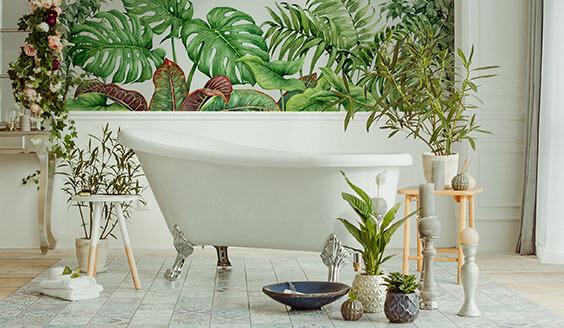 Pflanzen in Interieurs beruhigen die Sinne