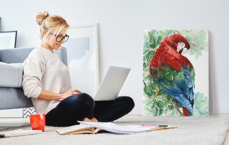 Bild Natur - Papagei
