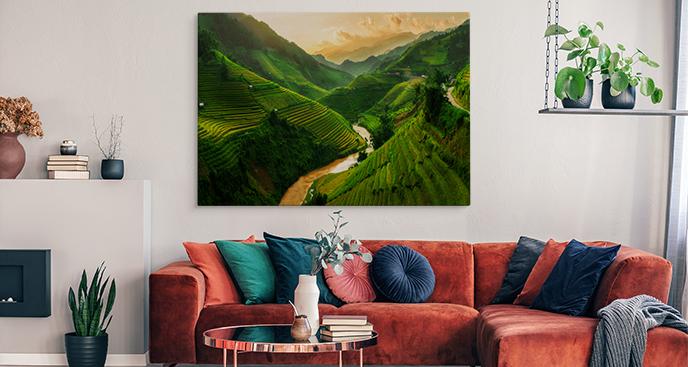 Bild Reisfelder