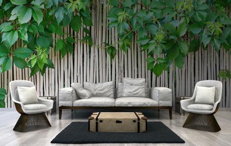 Fototapete Bambus für das Wohnzimmer