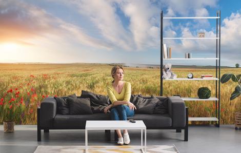Fototapete Feld in der Sonne fürs Wohnzimmer