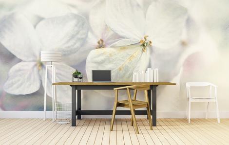 Fototapete für Büro weiße Blumen