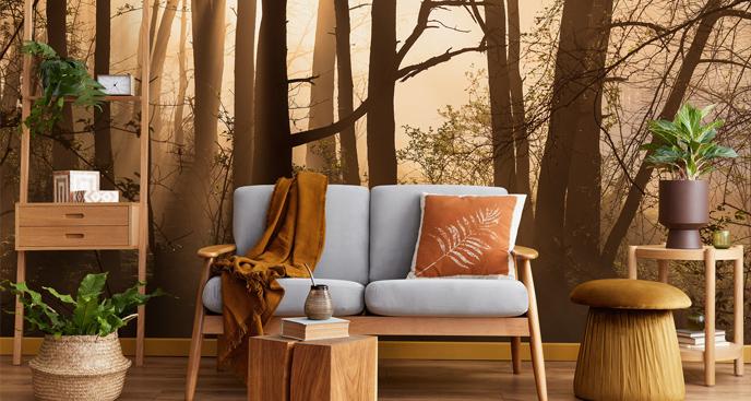 Fototapete fürs Wohnzimmer: Wald