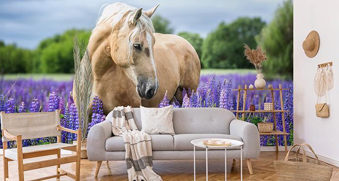 Fototapete Palomino Pferd