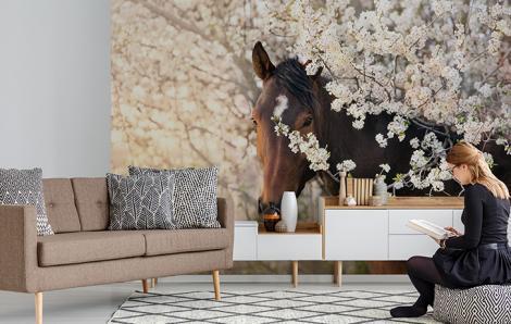 Fototapete Pferd in Blumen