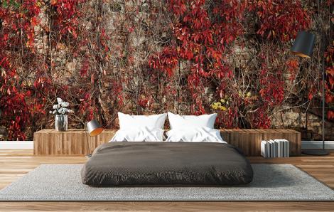 Fototapete Schlafzimmer Pflanzen