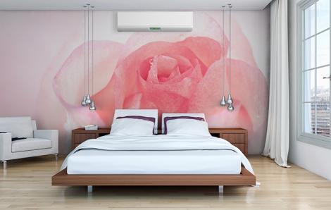 Fototapeten mit einer Rose für das Schlafzimmer