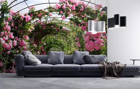 Fototapeten Rosen im Garten