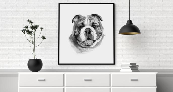 Poster englische Bulldogge