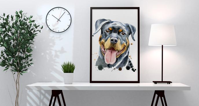 Poster mit Rottweiler