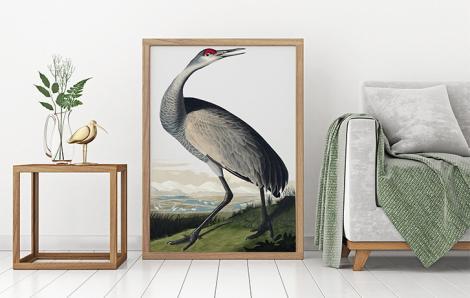 Poster mit Vogel – Schreikranich