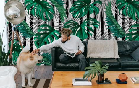 Tropische Fototapete fürs Wohnzimmer